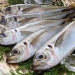 バストアップには魚を食べればよいって本当?