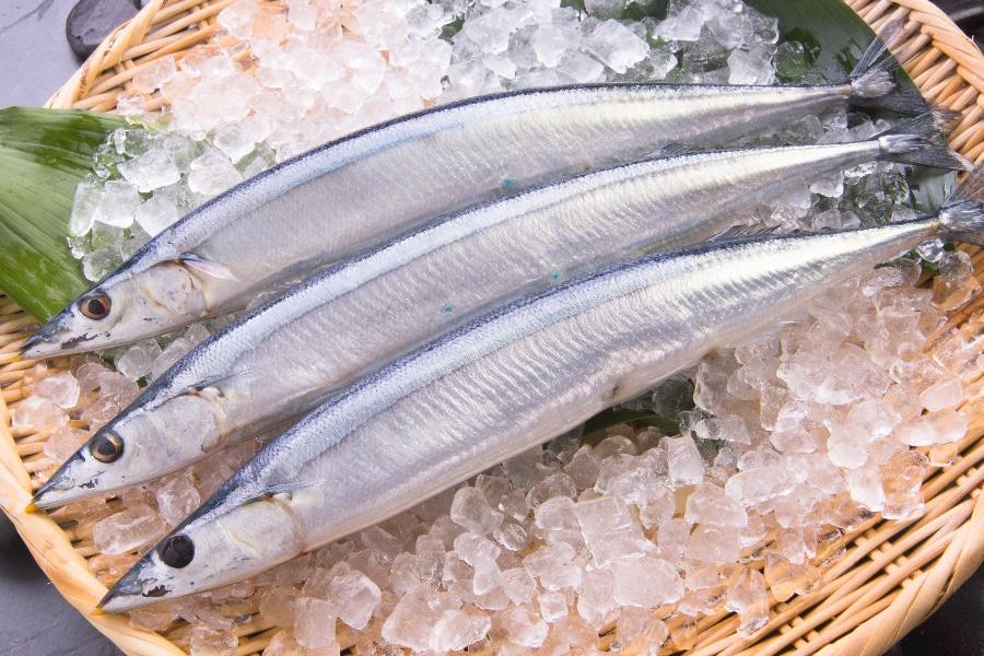 青魚は中性脂肪を下げてウエストを細くします
