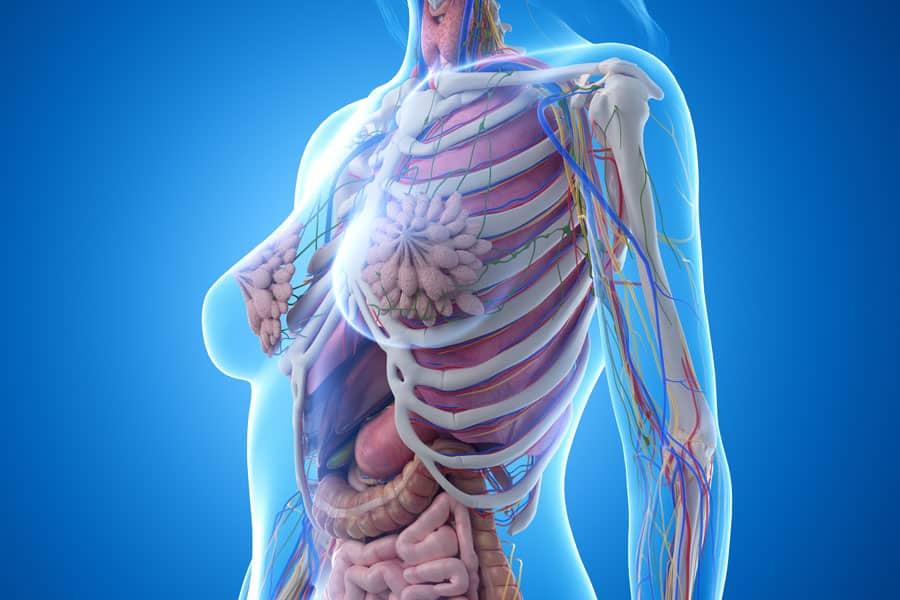 方法1 胸郭を正しい位置に上げる