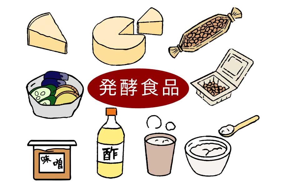 ダイエットとバストアップに発酵食品