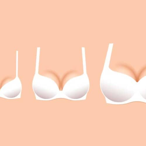 私の胸の大きさは他の女性の平均より大きい?小さい?